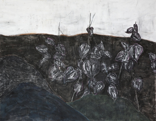 Green bean, 150*200cm, charcoal, pastel on canvas, 2018.5